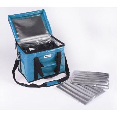 20L cold chain vaccine bag