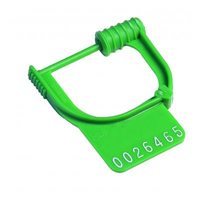 Handy Padlock Seal – Numbered in green