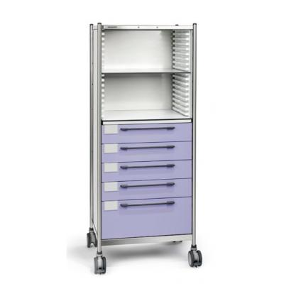 combined storage trolley